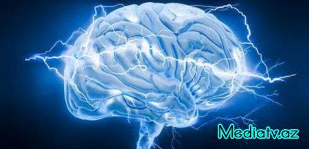 Beyin haqqında bilmədiyiniz gerçəklər (MARAQLI)