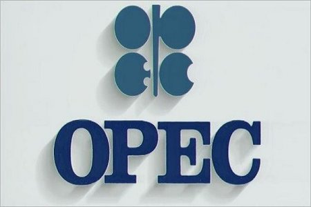 OPEC hasilatı azaltmaq istəyir